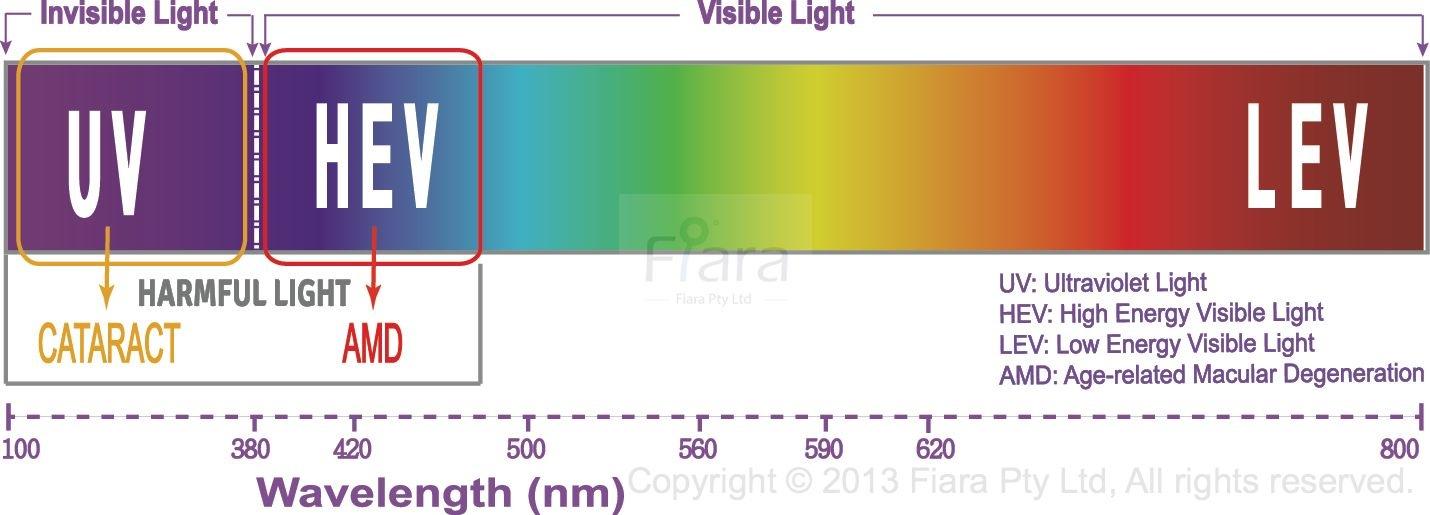 spectrum-bar-4-english-updated-1-wm.jpg